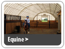 Equine Building Solutions. Equine riding arena, horse barn, rodeo arena, horse stables and more.