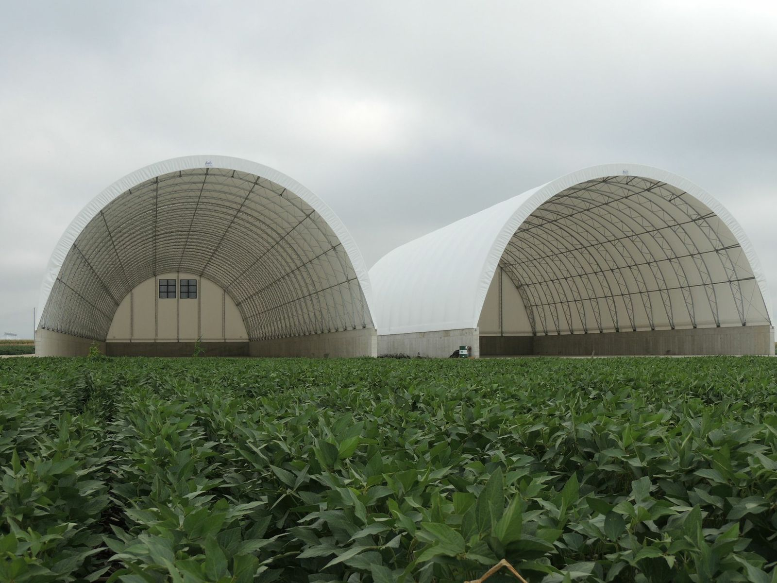 Livestock Beef And Dairy Fabric Buildings By Natural
